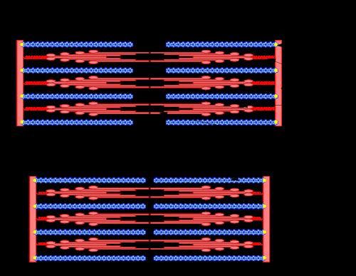 Een sarcomeer in rust (boven) en samengetrokken toestand (onder).