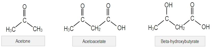 De drie ketonen die endogeen worden geproduceerd. Afbeelding schaamteloos geplukt van de internets.